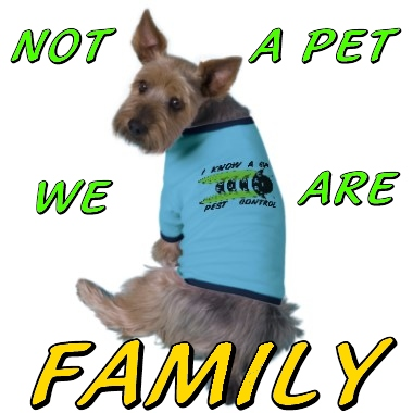 family pet safety
